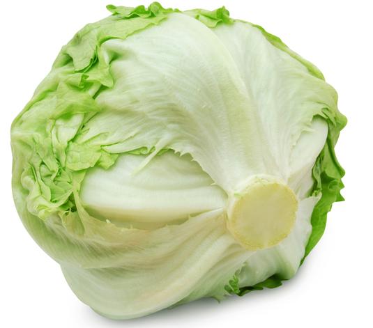 Eisberg Salat frisch